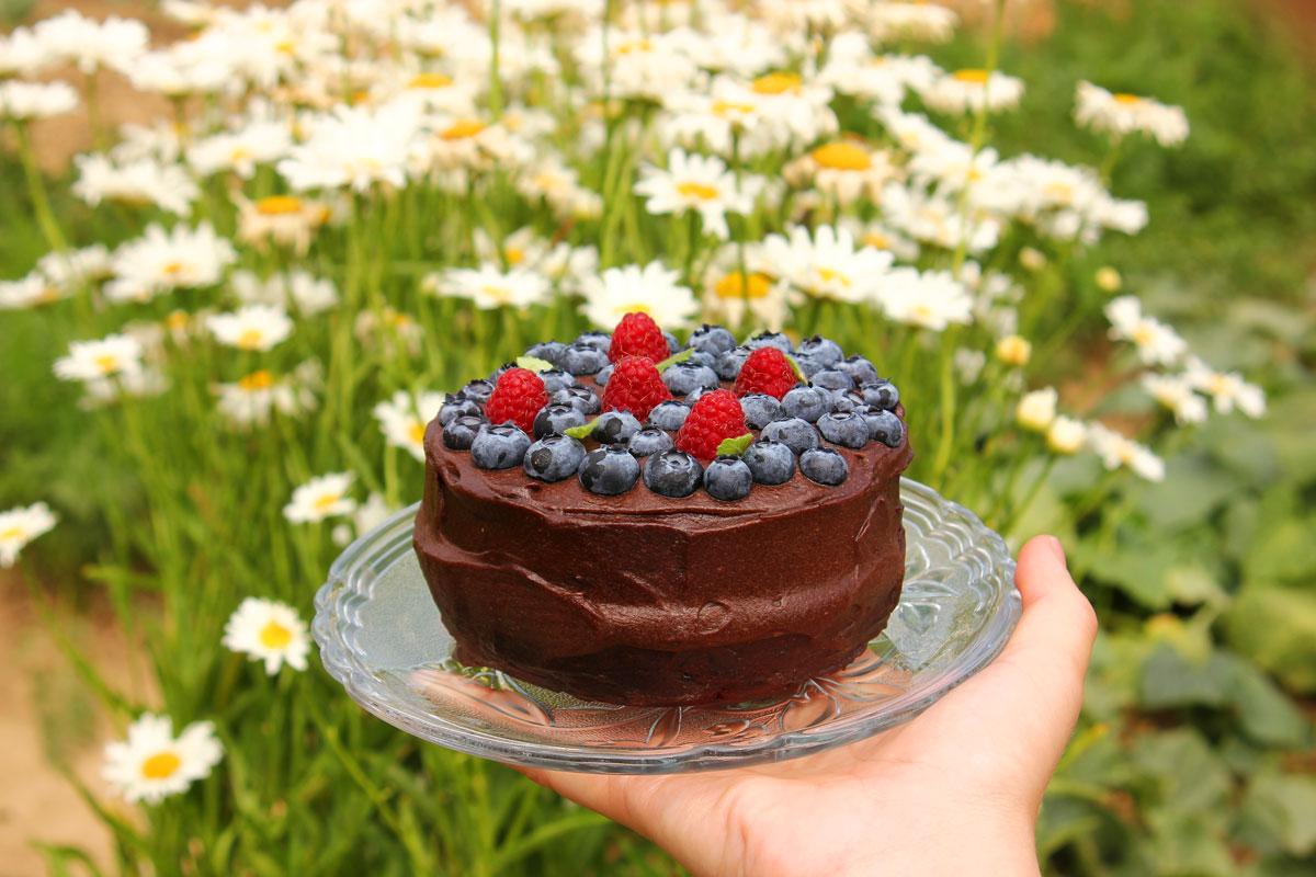 zdrava čokoladna torta